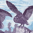 ANIMALS owl, spread your wings, vintage by Mauswohn