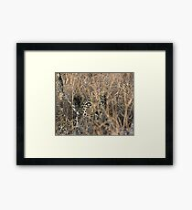 I Can See You, But You Can't See Me Framed Print