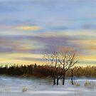 Winter sunset by Soualigua