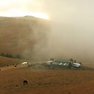 burning fog by Tony Middleton