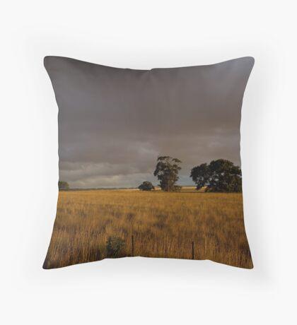 The Western Plains Throw Pillow