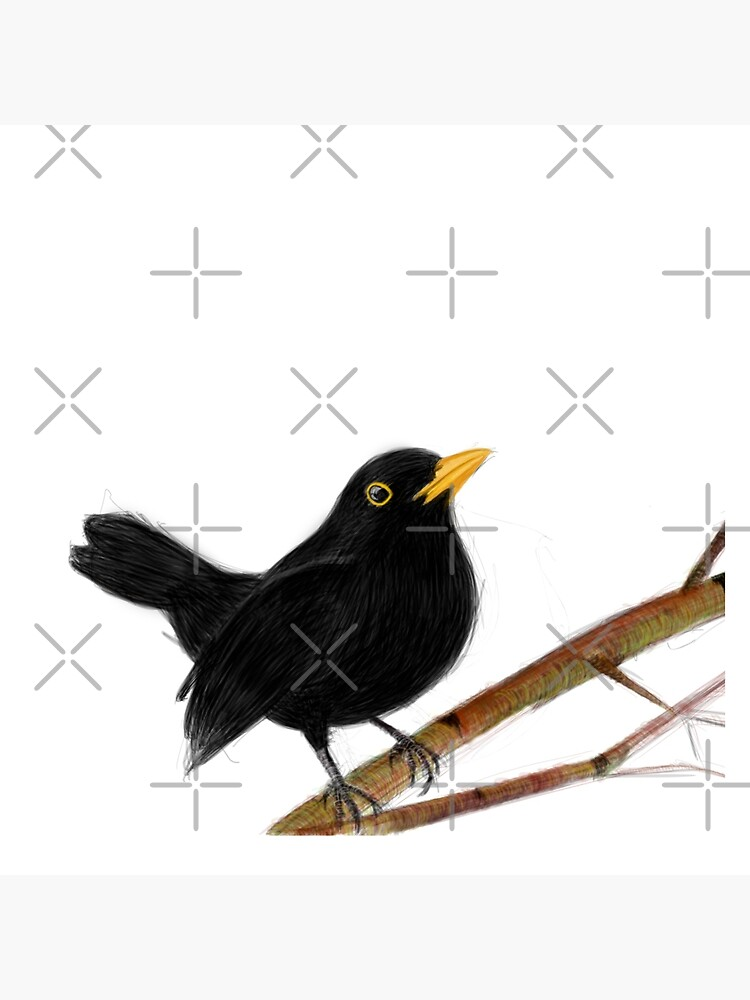 blackbird in love by mayerarts