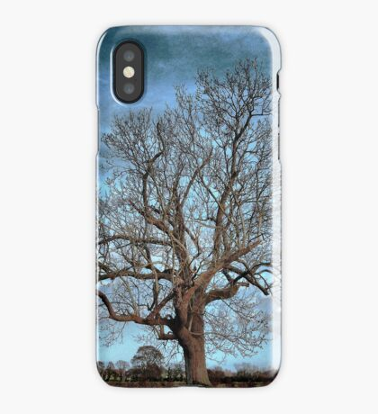 Barely December iPhone Case