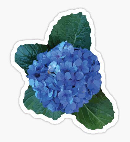 Azoren Hortensie Sticker