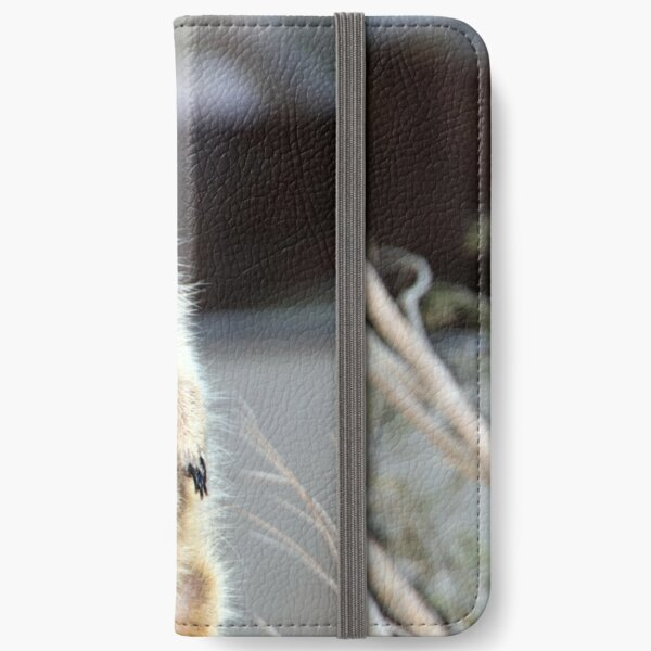Standing Tall iPhone Wallet