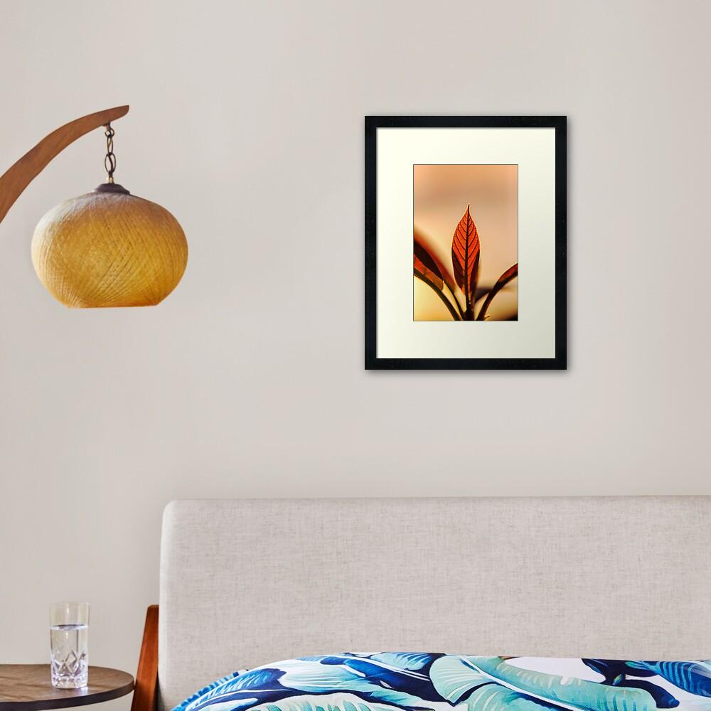 Avocado leaves, silhouette  Framed Art Print