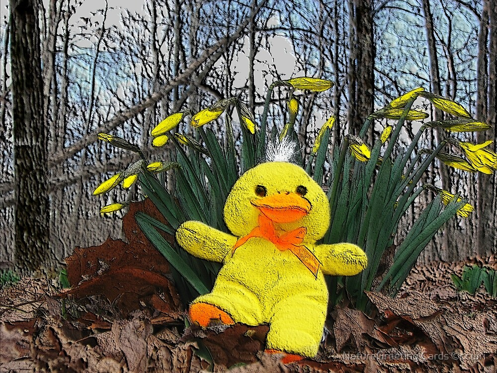 I'm a Little Lucky Ducky by NatureGreeting Cards ©ccwri