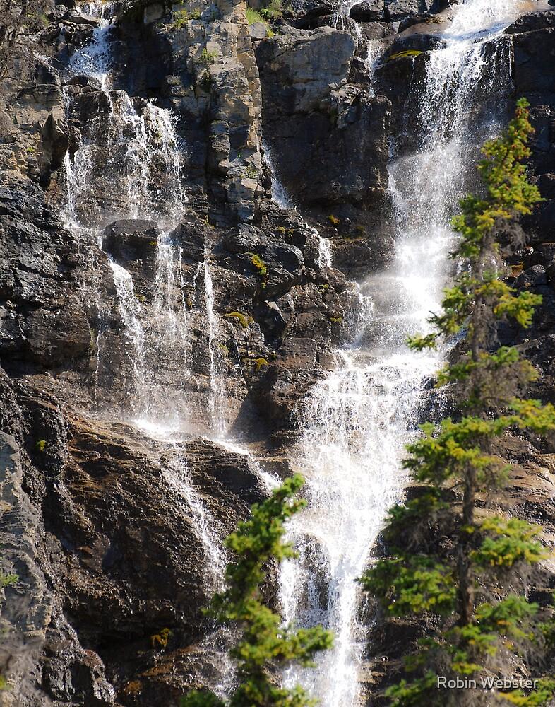 Waterfall by Robin Webster