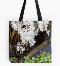 Winter Spring Tote Bag