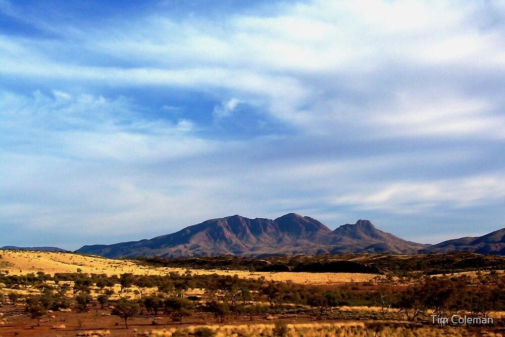 Mt Sonder, West MacDonnell Ranges by Tim Coleman