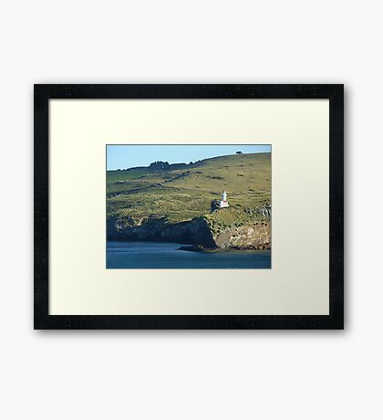 Otago Peninsula Lighthouse, Dunedin, NZ Framed Print