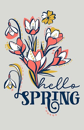 First Spring Flowers / Snowdrop, Primrose, Crocus by Markéta Stengl