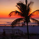 Tropical Beach Sunset by Barbara  Brown