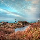 Alderney's lighthouse by NeilAlderney