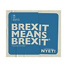 Brexit Mug by NYET! - a Brexit UK Border Farce