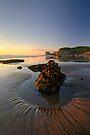 Maori Bay, Muriwai Regional Park by Michael Treloar
