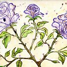Roses by Deb Coats