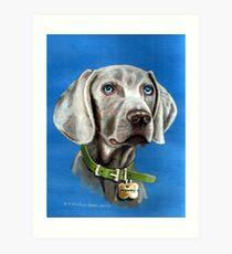 MONTY  WEIMERANER  (GHOST DOG) Art Print