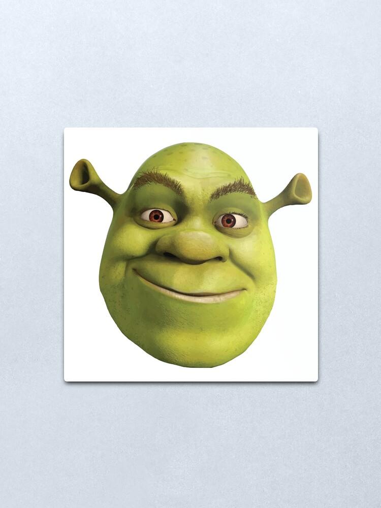 Shrek Face Metal Print By Spider Mayne Redbubble