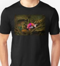 Animal - Fish - Pseudanthias pleurotaenia  Unisex T-Shirt
