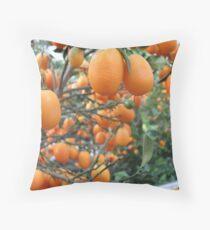 Orange Groove Throw Pillow