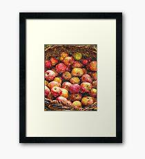 Apple Basket 1 Framed Print
