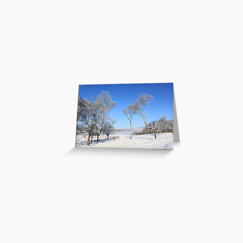Blue skies and snow Greeting Card