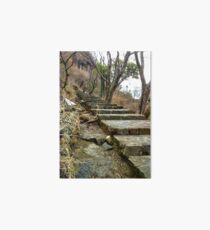 Escaleras en Malinalco  Art Board