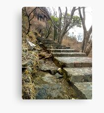Escaleras en Malinalco  Metal Print