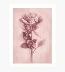 Lámina artística Una rosa rara
