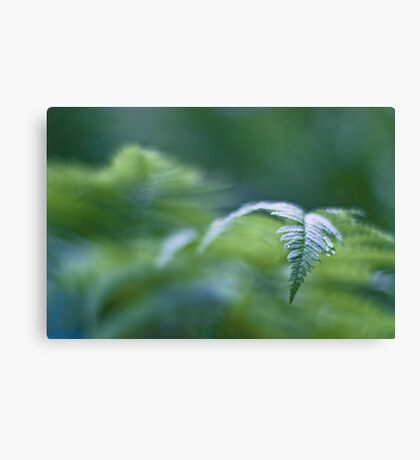 The green tide rolling in Canvas Print