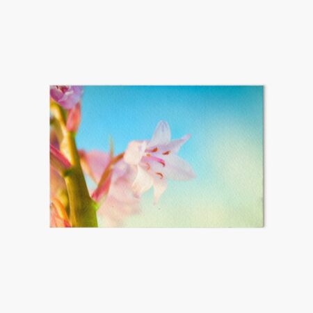 Pink Hyacinth Flower Art Board Print