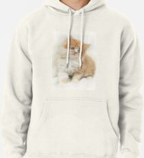 Softness Pullover Hoodie