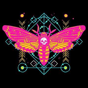 Vibrant Skull Moth by machmigo