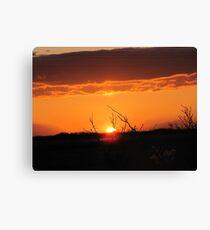 sunrise march  10 10 b Canvas Print