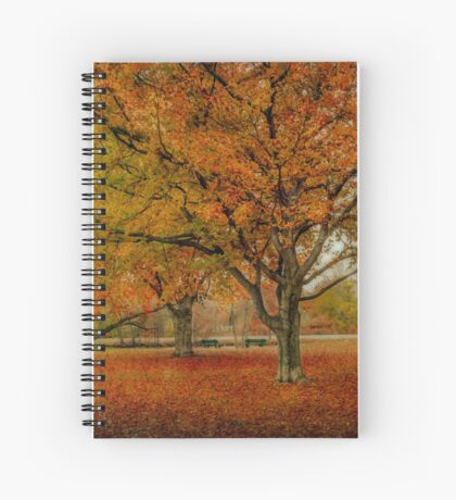 Newengland Colorful November. Spiral Notebook