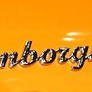 Lamborghini by brucecasale