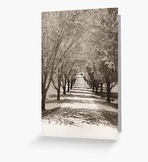 Trees Procession Greeting Card