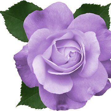 ONE FLOWER de afremovartist