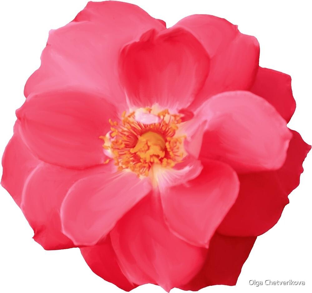 RED ROSE by Olga Chetverikova
