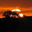 Sunset from Sunkist Bay by Kim Edmonds
