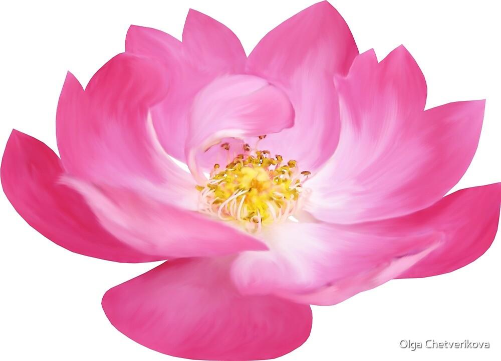 PINK FLOWER by Olga Chetverikova