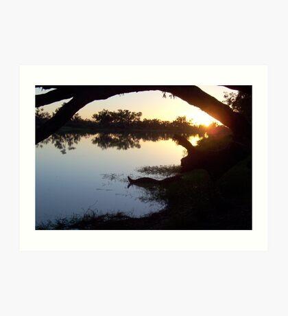 Sunrise on the Cooper Creek Art Print