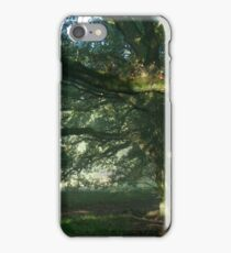 Early mornings iPhone Case/Skin