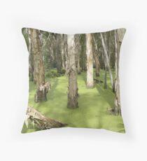Wetlands at South Stradbroke Island  Throw Pillow