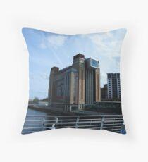 Dual Use Building Throw Pillow
