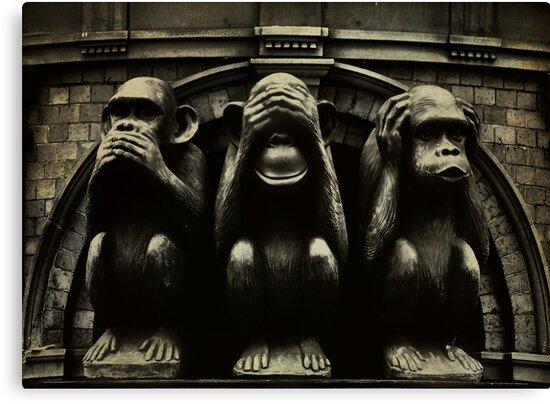 Three Wise Monkeys by Trish Woodford