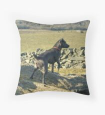 The Irish Rover Throw Pillow
