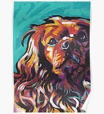 Póster cavalier king charles spaniel perro colorido brillante perro pop art