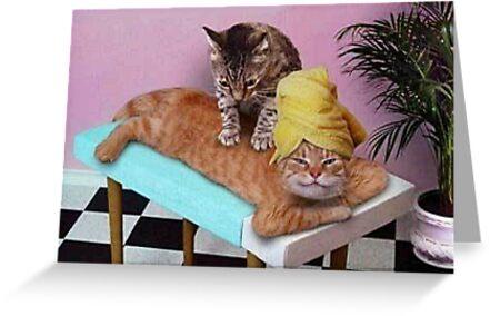 Lustige Katzenmassage von BlackStarGirl
